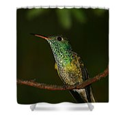 Versicolored Emerald Shower Curtain