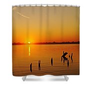 Vertical Ascent Shower Curtain