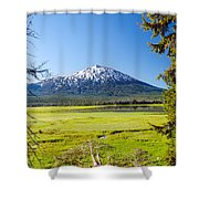 Vertical Mount Bachelor Shower Curtain