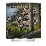 Vertical Photograph Of The Rocky Shore In Acadia National Park Shower Curtain