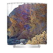 Vertical View Of Big Painted Canyon Trail In Mecca Hills-ca Shower Curtain