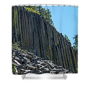 Vertical View Shower Curtain
