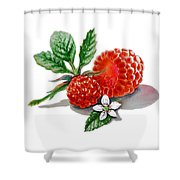 Artz Vitamins A Very Happy Raspberry Shower Curtain