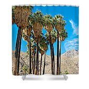 Very Tall Fan Palms In Andreas Canyon In Indian Canyons-ca Shower Curtain