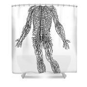 Vesalius: Nerves, 1543 Shower Curtain
