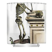 Vesalius: Skeleton, 1543 Shower Curtain