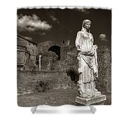 Vestal Virgin Courtyard Statue Shower Curtain