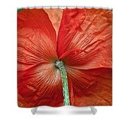 Veterans Day Remembrance Shower Curtain