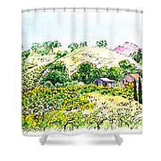 Viano Winery Martinez California Shower Curtain