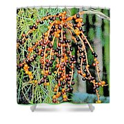 Vibrant Berries Shower Curtain