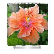 Vibrant Hibiscus Shower Curtain