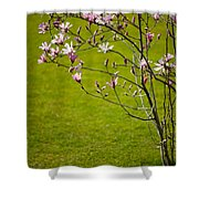 Vibrant Pink Magnolia Blossoms Shower Curtain