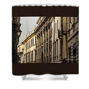 Vicenza Shower Curtain