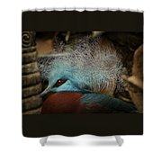 Victoria Crowned Pigeon In Tribal Decor Shower Curtain