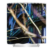 Victorian Abstract Two Shower Curtain