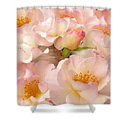 Victorian Pink Roses Bouquet Shower Curtain