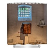 Victorian Punishment Shower Curtain