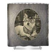 Victorian Westie Shower Curtain