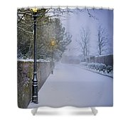 Victorian Winter Street Scene Shower Curtain