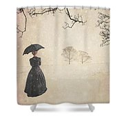 Victorian Woman In Winter Shower Curtain