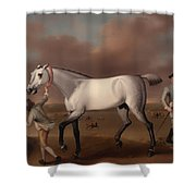Victorious At Newmarket Shower Curtain