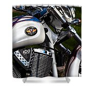 Victory 100 Cubic Inches Shower Curtain