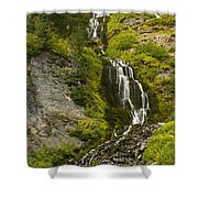Vidae Falls 1 Shower Curtain