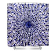 Vietri Sul Mare Pottery Shower Curtain