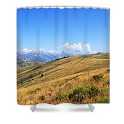 View From A Horse Shower Curtain