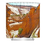 View From Above Capitol Gorge Pioneer Trail In Capitol Reef National Park-utah Shower Curtain