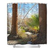 View From Creek Bed In Andreas Canyon In Indian Canyons-ca Shower Curtain