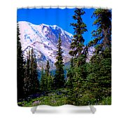 View From The Meadow Shower Curtain