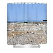 View In Front Of Mission Point Light House 03 Shower Curtain