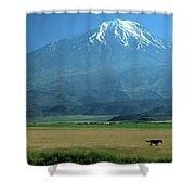 View Of Mount Ararat In Turkey Shower Curtain