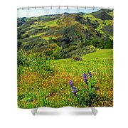 View Over Neverland Shower Curtain