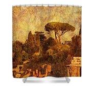 View Over The Forum In Rome Shower Curtain