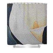 Vignettes - Calla Lily L Shower Curtain