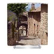 Village Lane Shower Curtain