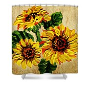 Vincent Van Gogh Would Cry  Shower Curtain
