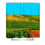 Vincent Van Gogh's Inspiration Shower Curtain