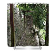 Vine-covered Passage Shower Curtain