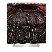 Vine Of Decay 1 Shower Curtain