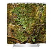 Vine On Tree Bark Shower Curtain