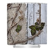 Vine On Wall Shower Curtain