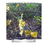 Vines On The Fence Shower Curtain