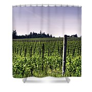 Vineyard 24077 Shower Curtain