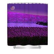 Vineyard 40 Shower Curtain