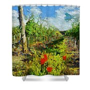 Vineyard And Poppies Shower Curtain