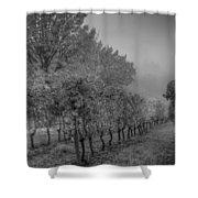 Vineyard Fog Shower Curtain