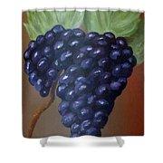 Vineyard Grapes On Terra Cotta Shower Curtain